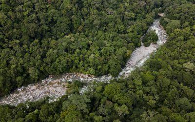 Colombia prohíbe fabricación, importación y exportación de productos con mercurio añadido