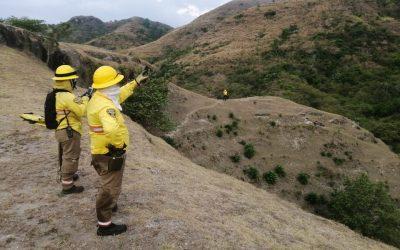 Los países de la Amazonía ya tienen un Protocolo para el Manejo de Incendios Forestales